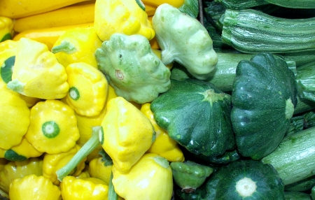 Summer squash from Alvarez Organic Farms. Photo copyright 2009 by Zachary D. Lyons.