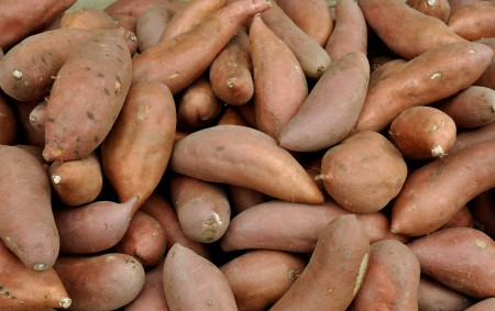 Sweet potatoes from Lyall Farms. Photo copyright 2013 by Zachary D. Lyons.