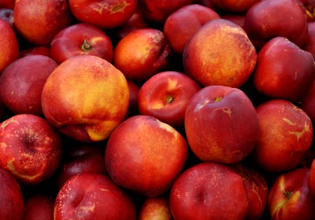 Honeyfire Nectarines from Tiny's Organic.. Photo copyright 2014 by Zachary D. Lyons.