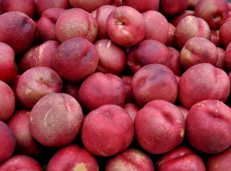 Nectarplums from Collins Family Orchards at Wallingford Farmers Market. Copyright Zachary D. Lyons.