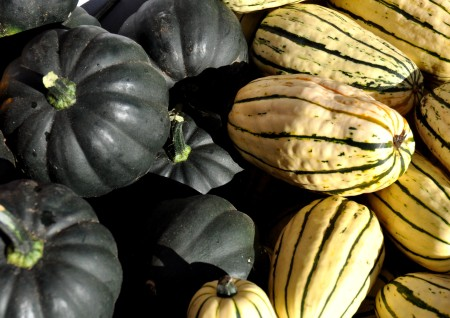 Winter squash from Kirsop Farm at Wallingford Farmers Market. Copyright Zachary D. Lyons.