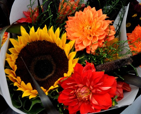 Late summer flower bouquets from Pa Garden at Wallingford Farmers Market. Copyright Zachary D. Lyons.
